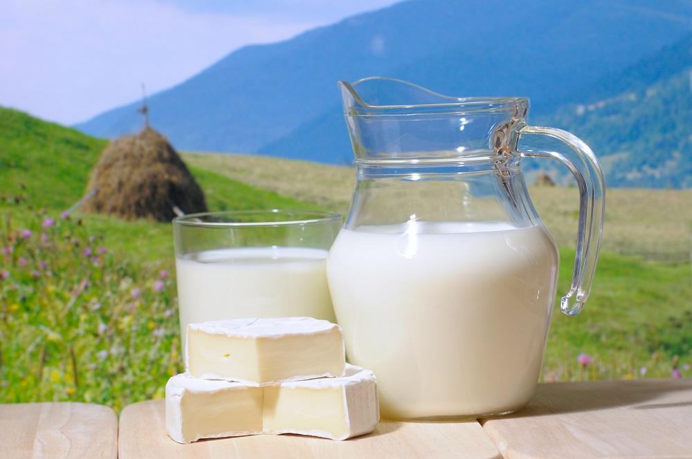 Bakteri Ini Loh Yang Dapat Merusak Susu