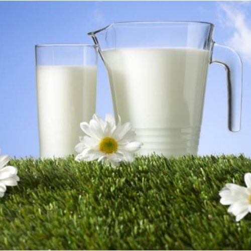 Tradisi Minum susu Sejak Sebelum Masehi
