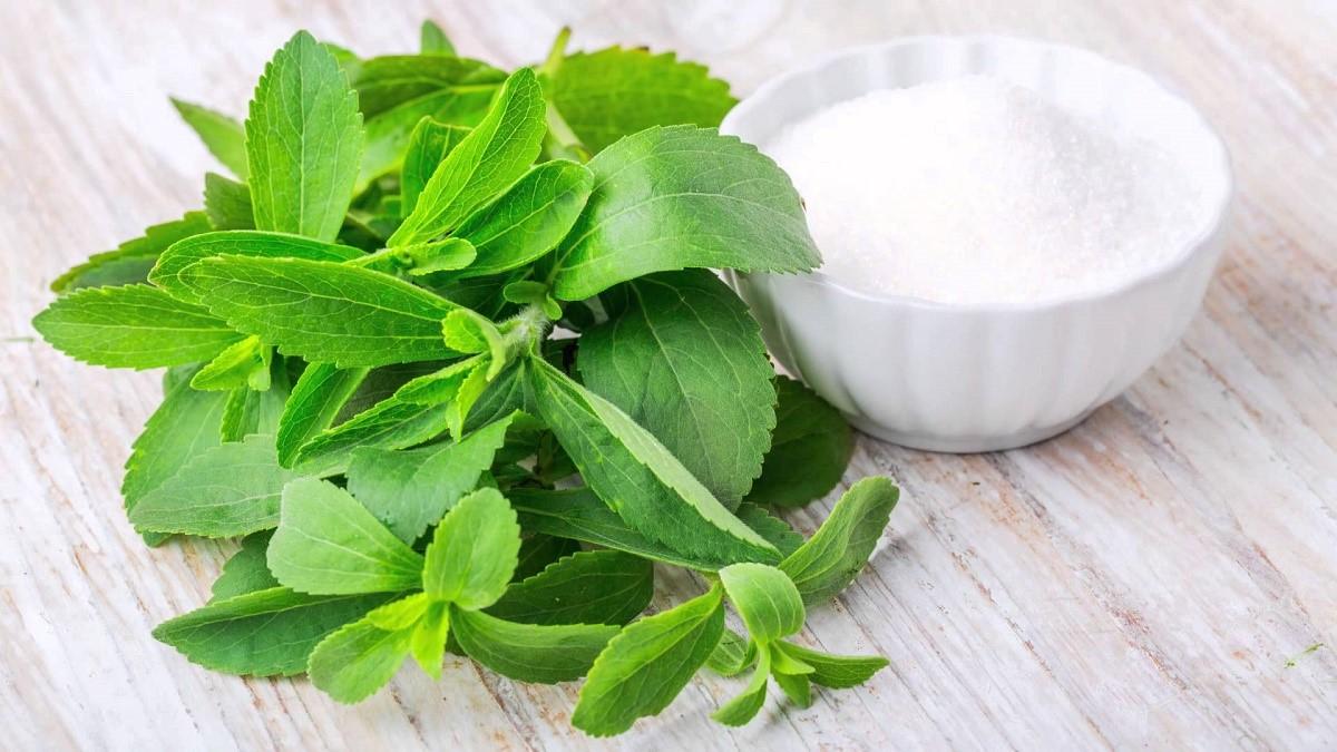 Stevia; Pengganti Gula Pasir yang Sehat
