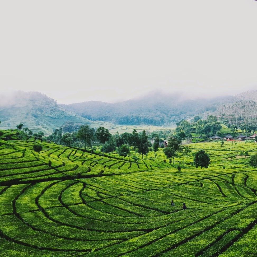 5 Destinasi Liburan Asyik di Bandung untuk Melepas Penat