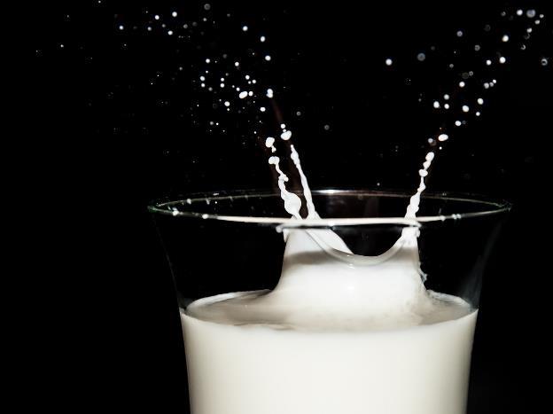 Kata Siapa Susu Bikin Gemuk? Ini Faktanya!
