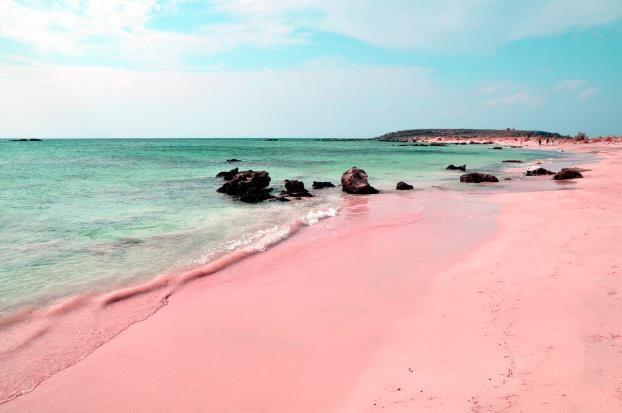 Selain Indonesia, Ini Negara yang Punya Pantai Cantik Berwarna Pink