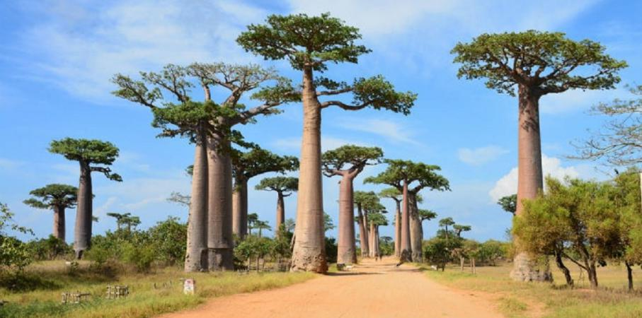 Destinasi-Destinasi Wisata Ini Konon Bakal Lenyap dari Muka Bumi