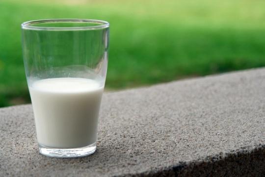 Susu Bisa Gantikan Nutrisi Makanan yang Kita Konsumsi Sehari-Hari, Benarkah?