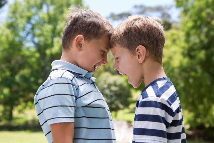 Trik Mendamaikan Si Kecil yang Suka Bertengkar Dengan Saudara Kandungnya