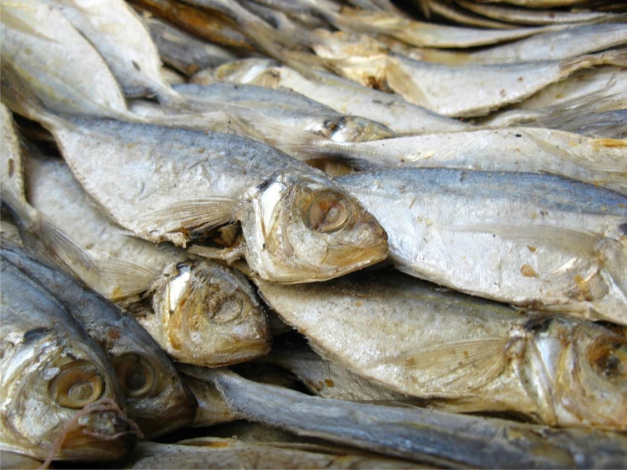 Resiko Kanker Dibalik Lezatnya Ikan Asin
