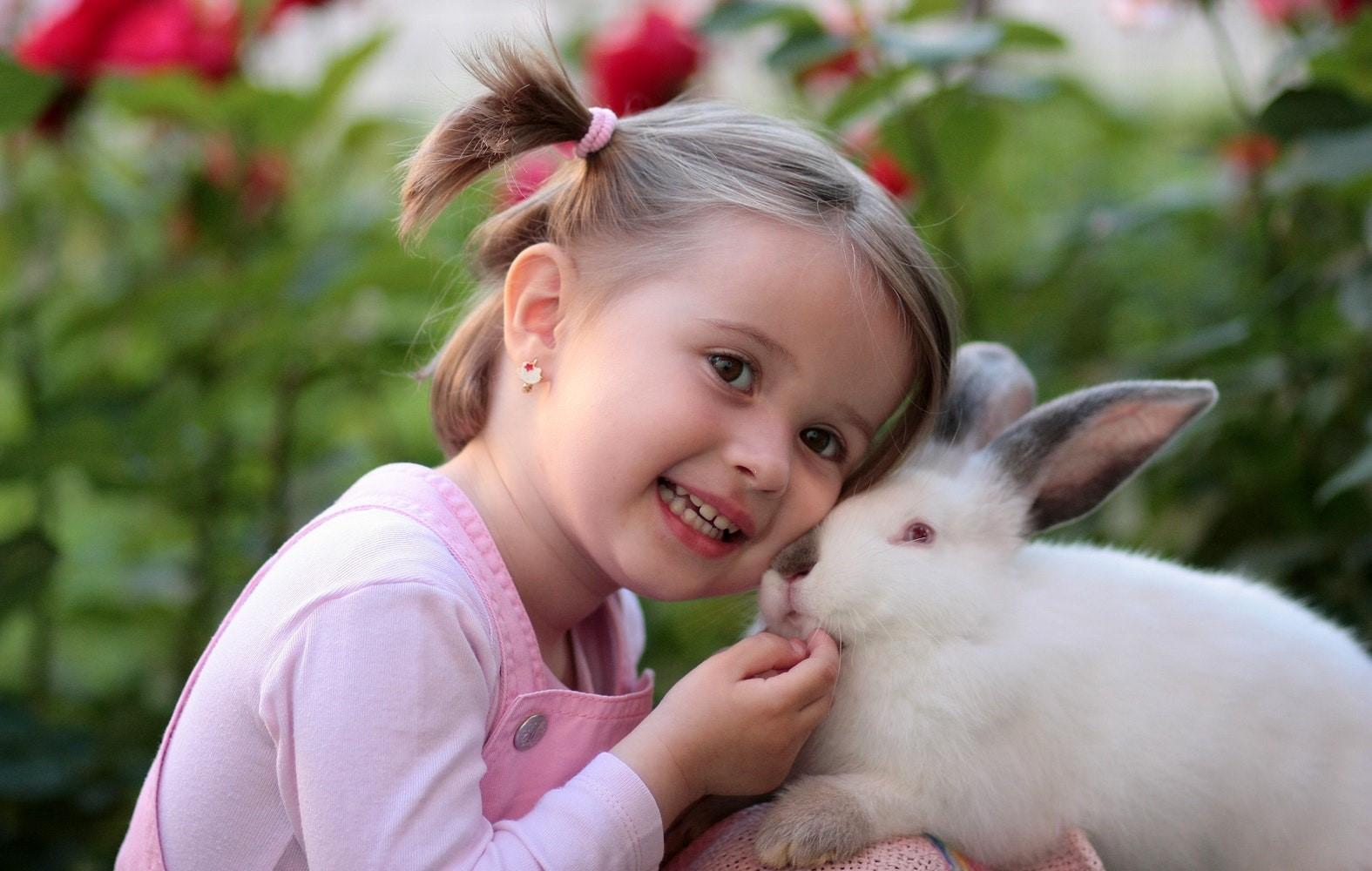 Jangan Anggap Sepele! Gigi Susu Berlubang Bisa Berbahaya bagi Si Kecil