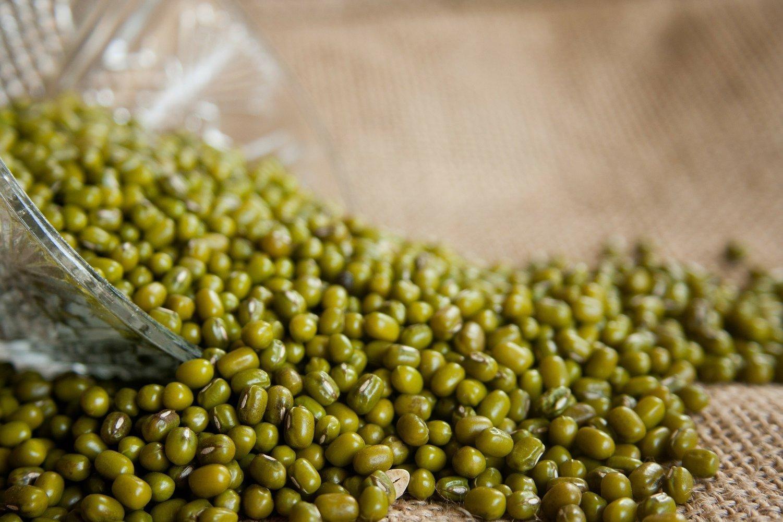 Resep Mudah Bubur Kacang Hijau Susu UHT